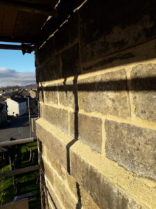 Close-up of lime pointing in sunlight