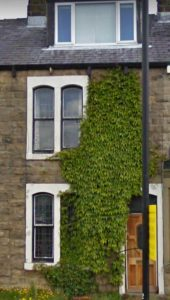 terraced house with ivy growth covering face